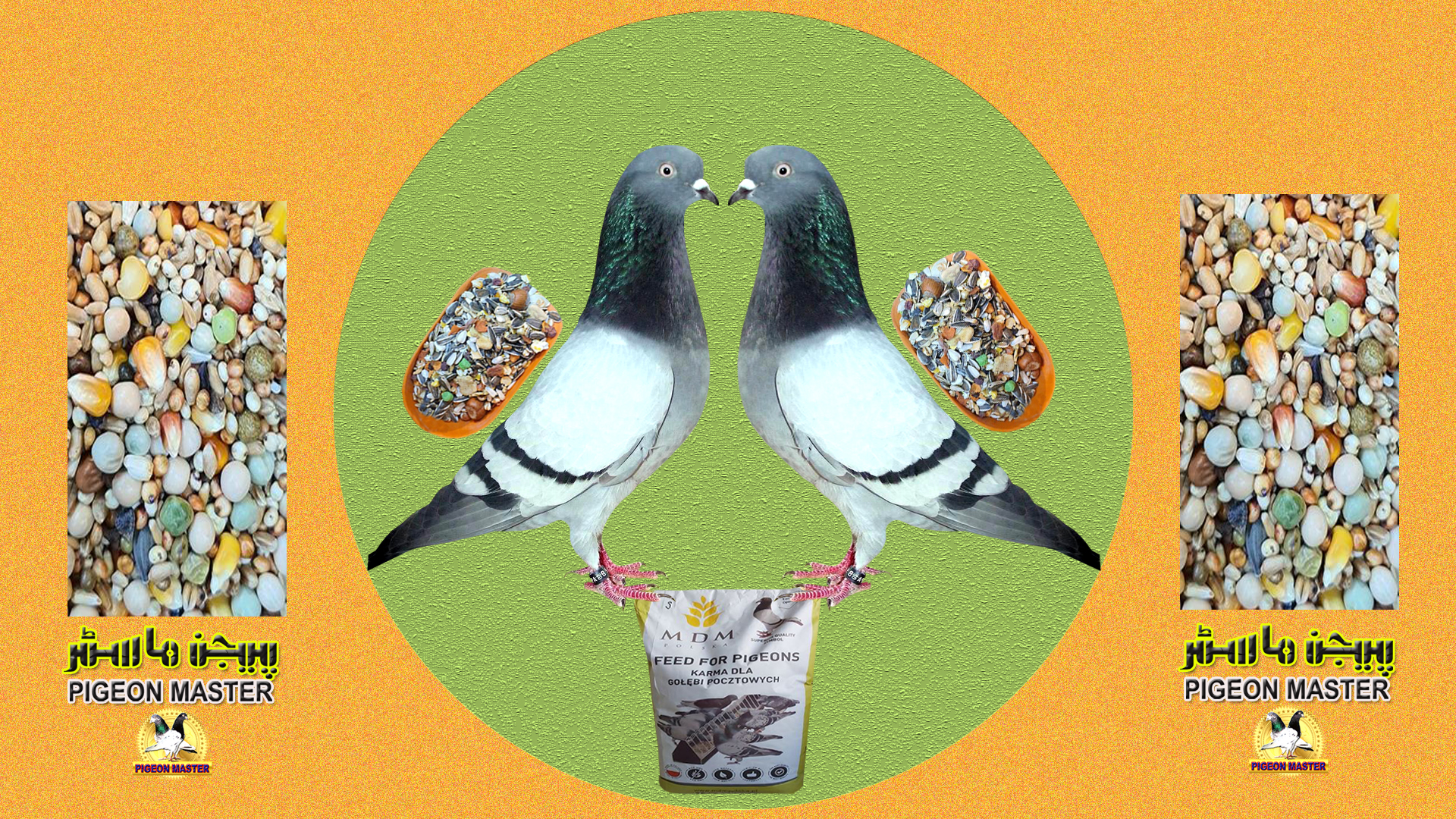 Pigeon Feed Mix For English Flying Tipplers