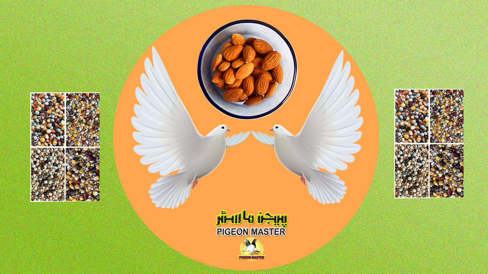 Pigeon Feed Mix For Low Flyer Pigeons