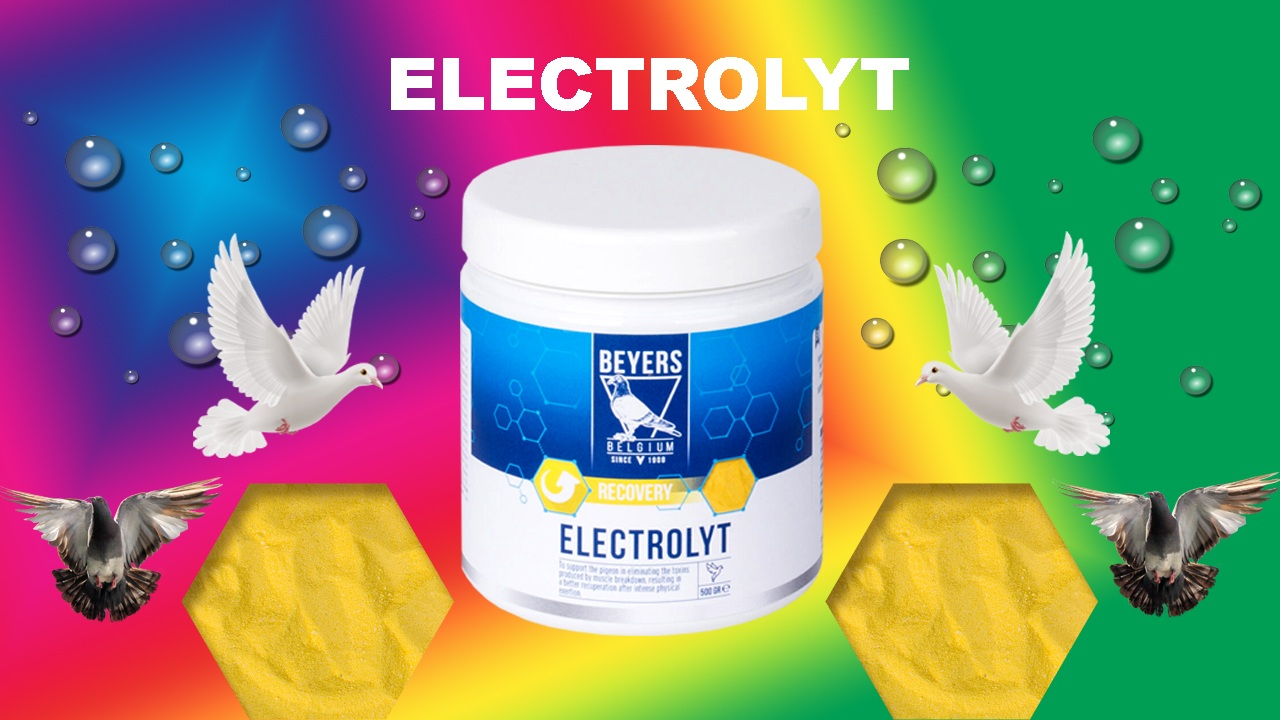 Electrolyt best Pigeon Recovery Electrolytes
