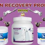 Pigeon Recovery Products